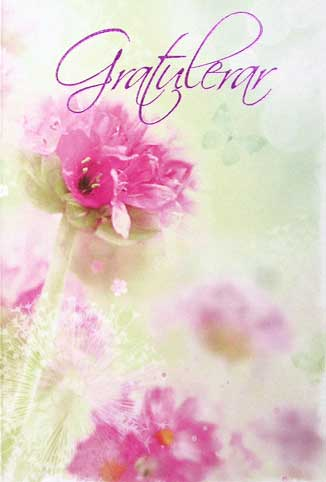 gratulerar Gratulerar Rosa blommor Folierad gratulerar