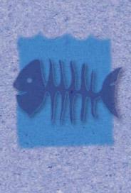 Fisk ben
