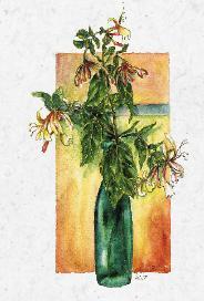 Blommor i flaska