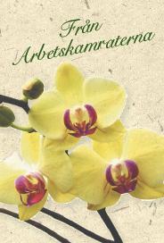 Ljust kort med gula orkideér ''Från arbetskamraterna''