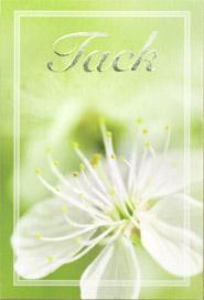 Närbild på blomma , folierad text '' Tack''