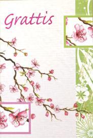 Magnolia i akvarell , folierad text '' Grattis ''
