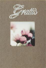 Blommor i motljus