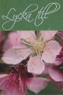 Minikort Lycka till lila blomma