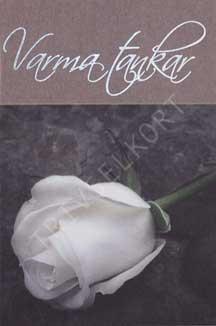 Minikort Vit ros Varma Tankar
