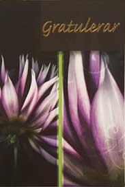 Blommor Gratulerar