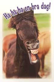 Gnäggande häst