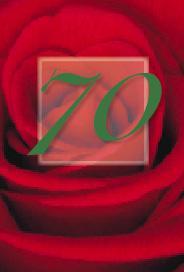 Röd ros 70år
