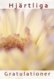 Beige blomma '' Hjärtliga gratulationer ''
