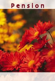 Oranga & gula blommor '' Pension ''