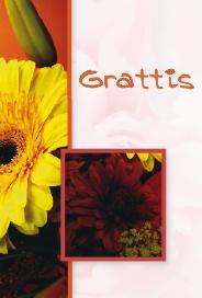 Höstbukett '' Grattis''