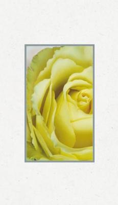Ljus gul ros