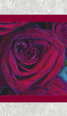 Grått kort med röd ros.