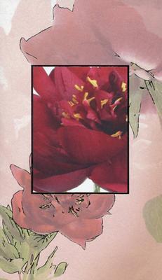 Olackat kort blomsterkort med silver ram.