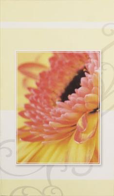 Orange blomma i ruta, textfri