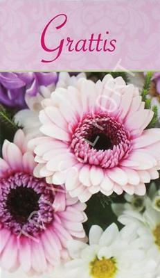 Rosa Blommor, Grattis