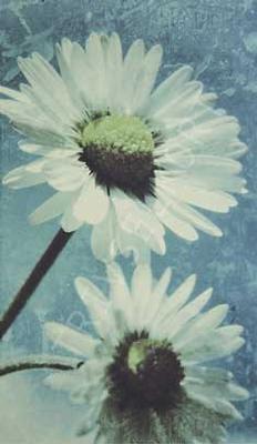 Vit blomma antik