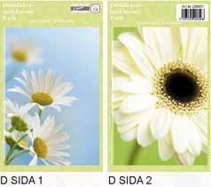 Sida 1: Vit blommor . Sida 2:Vit blomma