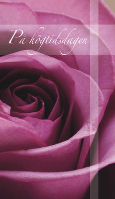 Lila ros ''På högtidsdagen''