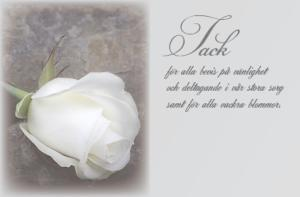 Kondoleanskort, Vit ros '' Tack ''