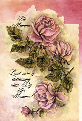 Rosa rosor.''Till Mamma''