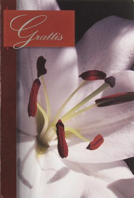 Närbild på vit blomma, folierad text '' Grattis ''