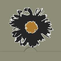 svart blomma mot grå bakgrund