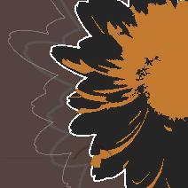 Orange svart gerbera, brun bakgrund