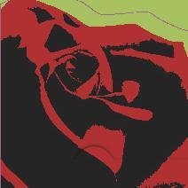 Ros svart röd , grön bakgrund