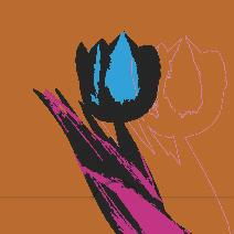 Blå rosa tulpan, orange bakgrund
