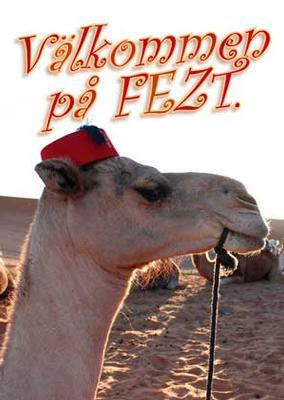 Inbudningskort Kamel