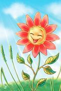 Glad Blomma