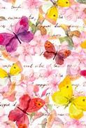 Minikort Fjärilar & Blommor, Textfri