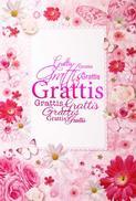 Många Grattis Rosa blommor o fjäril