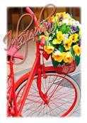Inbudningskort Röd cykel